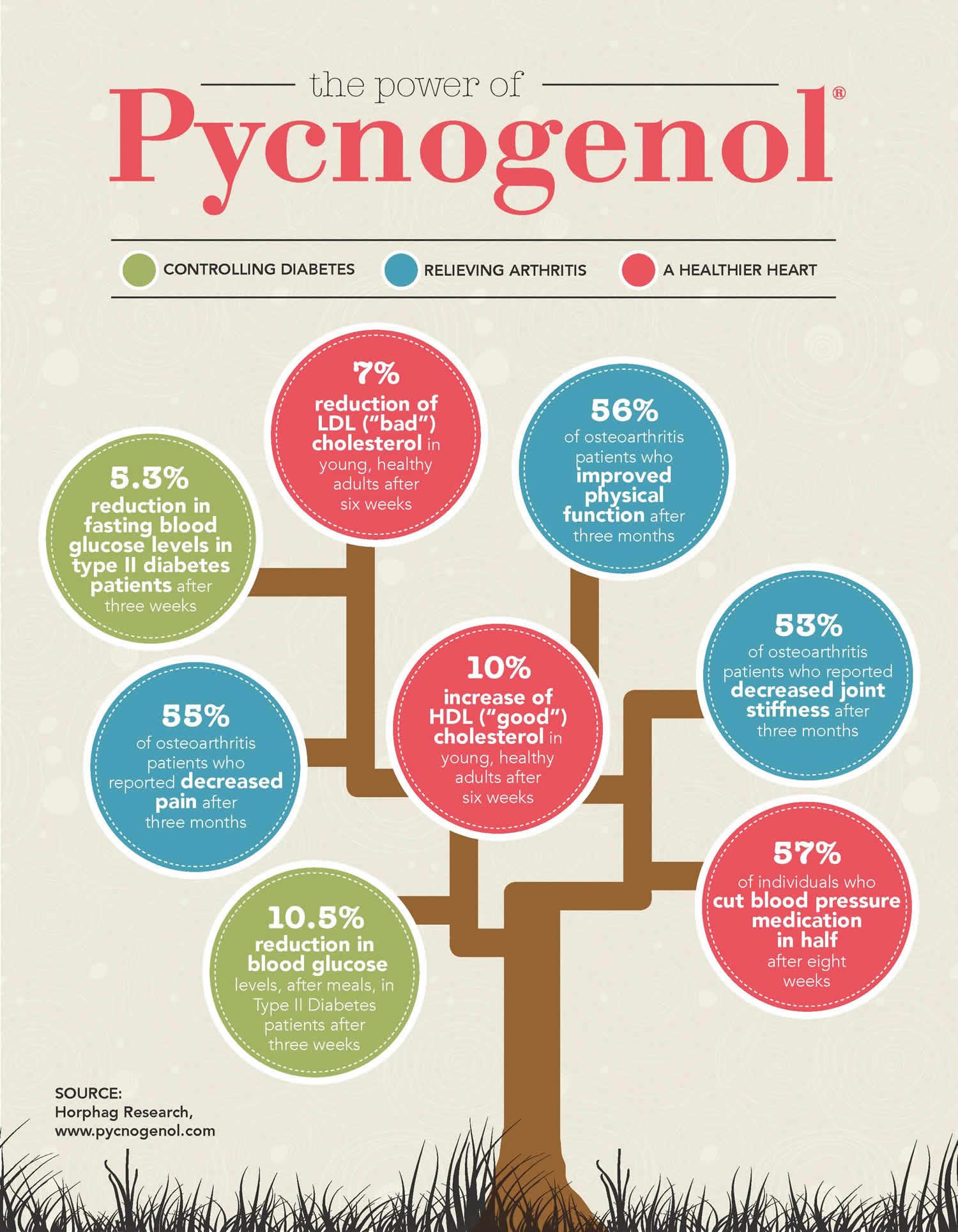 The Power Of Pycnogenol