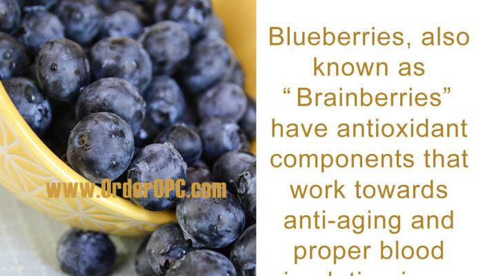Benefits Of Adding Blueberries To Your Diet